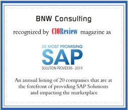 BNW Consulting